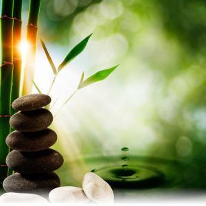 Patricia McNab: Naturopath, Herbalist, Acupuncturist